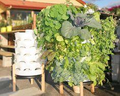 garden barrel!!