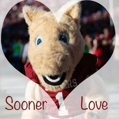 Love my SOONERS!