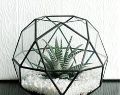 Geometric Glass Terrarium / Cube / Square / by WhiteLiesJewelry Handmade Furniture - http://amzn.to/2iwpdj4