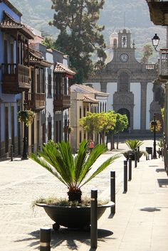 Teror Gran Canaria / Canary Islands Spain