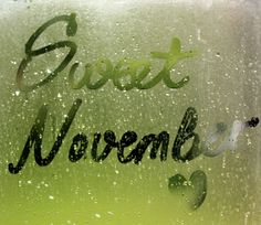 """"""" Sweet November """" is a poem about desires. I wanted to write romantic love poems about falling in love and wanted to praise her in all my romantic poetry. Sweet November, November Rain, Hello November, December, I Fall In Love, Falling In Love, November Backgrounds, Romantic Love Poems, Dog Best Friend"""