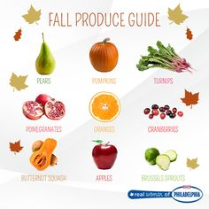 From cranberries to Brussels sprouts, use our handy guide to learn about all the fall fruits and veggies that are in season!