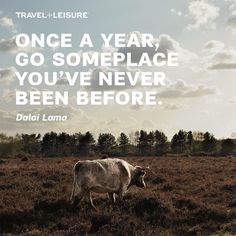 From visiting the new seven wonders to food trekking in China, what's your greatest dream trip?