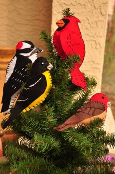 Birding Without Barriers - Who needs all those store-bought Christmas tree ornaments when you could have these?!  With some felt and yarn, and the cool bird patterns from Downeast Thunder Farm, you can make your own bird ornaments, and the patterns are free!