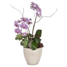 Faux potted violet orchids and succulents in weathered ceramic planter.  Product: Faux floral arrangementConstruction Material: Fabric and glassColor: Violet and greenDimensions: 36 H x 20 W x 12 D Cleaning and Care: For indoor use only. Wipe with feather duster or damp rag.