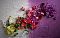 ©2014 - Lauren Krysti Photography, Prop Styling by Helen Quinn