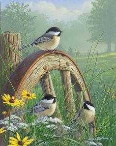 "️Birds ~ ""Meadow's Edge Chickadees"" by Jim Hautman Bird Pictures, Pictures To Paint, Pretty Birds, Beautiful Birds, Watercolor Bird, Watercolor Paintings, Art Paintings, Bird Drawings, Horse Drawings"