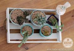 Bandeja para vasinhos de suculentas estilo rústico chique! Assim fica fácil ter um mini jardim dentro de casa! - How to make a tray to store your succulents!