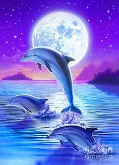 Робин кони - день Дельфина