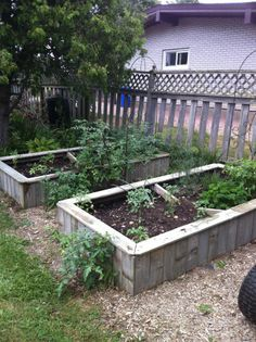 Old fence recycled into garden boxes