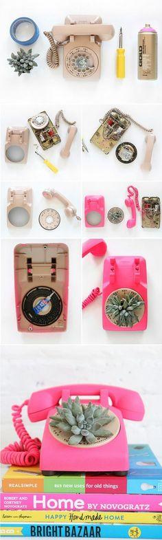 un téléphone vintage rose, déco plante succulente, idée comment créer une décoration florale, diy facile et rapide, tuto deco