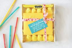 DIY Peeps gift for E