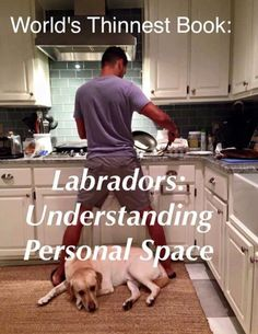 This is so our Lab!!