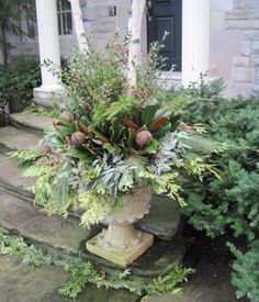 winter container gardens with evergreens | Jim McMillen is the owner of Landscapes in Bloom .