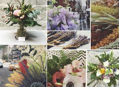 Making the Most of Late Winter Flowers with Petal By Pedal