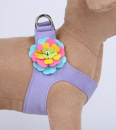 Fantasy Flower Ultrasuede StepIn Dog Harness French Lavender XXS 95  105 inch girth >>> Want additional info? Click on the image.
