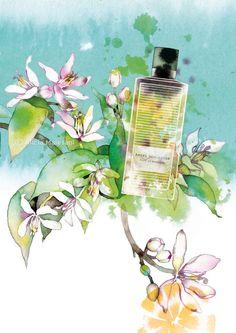 Perfume - A. Schlesser