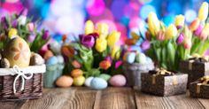 """Diese """"Hasen-Pflanzen"""" braucht jeder für Ostern! #News #Wohnen"""