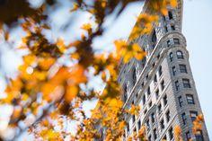 #Flatiron Building, New York, United States  #Nikon - NIKON D3300, 1/4000s, f/4, 50mm, ISO 100