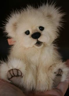 Gotta Love Bears! on Pinterest | Teddy Bears, Polar Bears and Baby ...