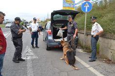 Tornava da un viaggio dalla Spagna con cinque kg di droga. Arrestato dalla GdF