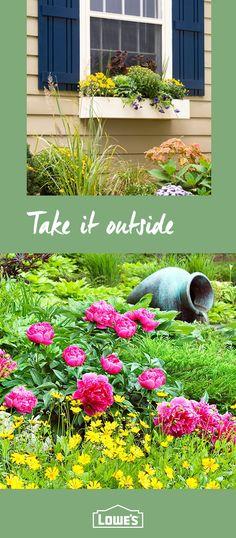435 best Gardening Tips images on Pinterest in 2018   Gardening tips ...