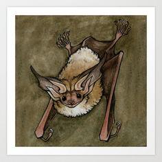 Pallid Bat by Savannah Horrocks