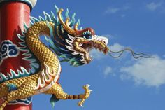 Free Will and Buddhism: In Chinese culture, dragons represent freedom, clarity and creativity.