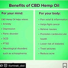 9 Best CBD Oil Benefits images in 2018   Hemp oil, Cannabis, Cbd