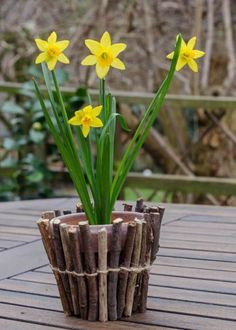 How to make your own twig wrapped flower pots - a simple and fun nature activity for children, great for a homemade gift too! Twig Crafts, Diy And Crafts, Cool Diy Projects, Garden Projects, Garden Ideas, Twig Christmas Tree, Twig Art, Recycled Decor, Homemade Mothers Day Gifts