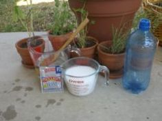 DIY Mosquito trap. We will need it this year!!!!