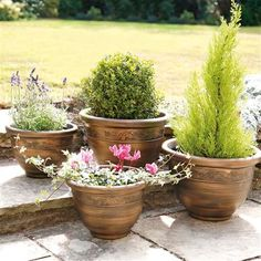 Gablemere Pack Of 4 Planters