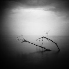 The Holga Darkroom: Feature Photographer Series - Infrared Holga by Wallace Billingham
