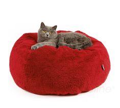 Katzenbett Feline Drop von Profeline. Neu und modern - Form eines Tropfen wird Ihre Katze begeistern. Auf diesem Bett wird sich Ihre Katze wie auf Wolken fühlen. Hoher Liegekomfort durch extra weiche und elastische Silikonfüllung. Das Katzenbett besteht aus einem separatem Inlett und dem kuscheligen Überzug mit Reißverschluß.  Größe ca. D: 60 cm H: 27 cm Qualität Natur: 50% Baumwolle 50% Polyester Waschbar: 60°C Trockner geeignet