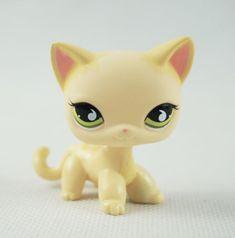 Lps Littlest Pet Shop, Little Pet Shop Toys, Little Pets, Lps Cats, Cat Toys, Lps Shorthair, Rare Lps, Custom Lps, Lps Accessories