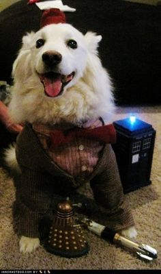 OH MY GOD DOCTOR DOG <3