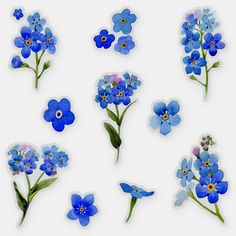 Forget Me Nots Flowers, Tiny Flowers, Pretty Flowers, Blue Flowers, Birth Flowers, Hydrangea Flower, Mini Tattoos, Cute Tattoos, Blue Flower Tattoos