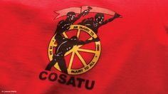 Unions have been co-opted - Malema Youth Unemployment, Workers Union, Labor Law, Free State, Freedom Fighters, African, Communication, University, Construction