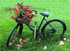 Love bikes with baskets!