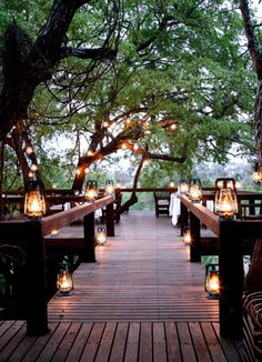 simple lighting and so pretty for entertaining. This looks like a walkway in the trees!  Pretty!