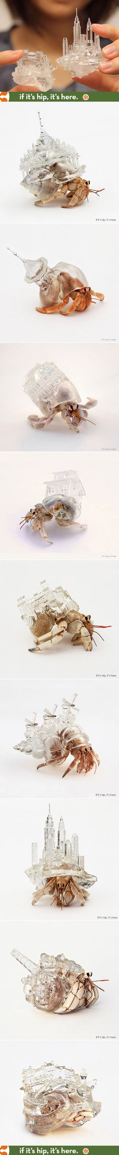 Artist Aki Inomata's 3D-printed acrylic shells for the hermit crab. See the entire project at http://www.ifitshipitshere.com/hermit-crabs-don-3d-printed-cityscapes-shells-project-migration/