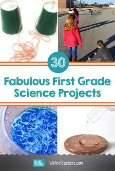 These first grade science projects are hands-on learning at its best. Build a bird feeder, explore surface tension, and so much more. Try these out! Hands On Learning, Hands On Activities, Fun Learning, Learning Activities, Teaching First Grade, First Grade Teachers, Teaching Kids, Science Experiments Kids, Science Lessons