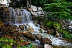 Forest Park Waterfall - In Forest Park right here in St. Louis, MO.  One of the country's largest city parks, this waterfall is right across from the golf course clubhouse.