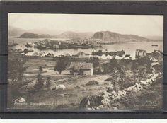 Møre og Romsdal fylke Aalesund Stenvaagsundet Alb. Gjørtz tidlig 1900-tall