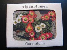 Old set Color Postcards Alpenblumen Flora Alpina...12 Photos in a folder...