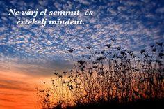 Ne várj el semmit, és értékelj mindent. Expect nothing and appreciate everithing. Spirituális Extázis Ezoterikus Jógaközpont Győr, Kisfaludy utca 2.  #Tradicionális #jóga #yoga #hatha #tantra #integrál #meditáció #önismeret #felszabadulás #megvilágosodás #Győr #önfejlesztés