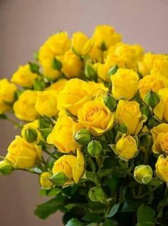 Yellow roses pinterest yellow roses life photo and flowers more information mightylinksfo