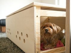 DIY coffe table / dog crate...wanna try and figure out how to do this for the cats