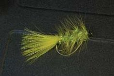 Must-have bass flies.  sounds worthwhile to me!