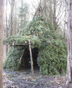 primitive shelter designs - Google Search